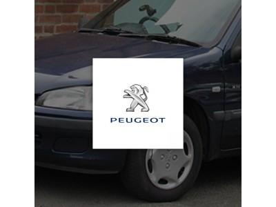 Peugeot (1)